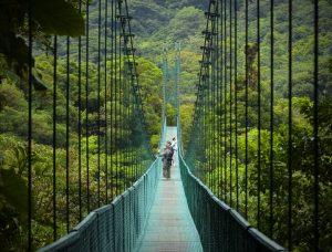 costarica_monte_verde_verde2