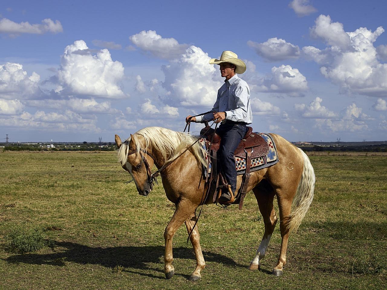 cowboys-ranch-amerique-usa-authentique